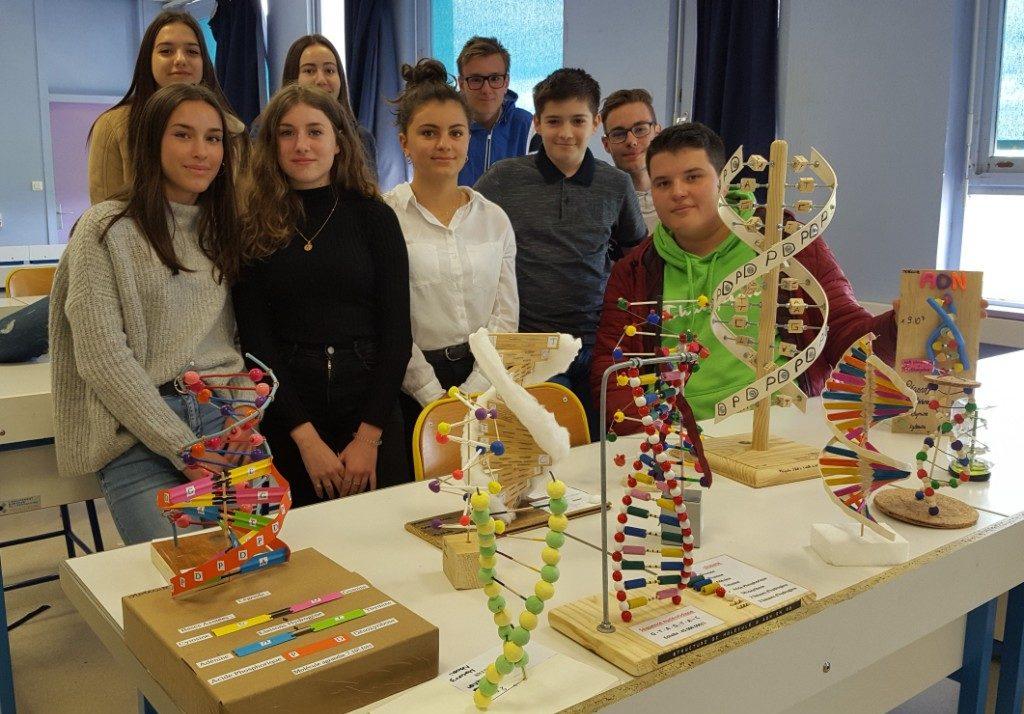 SVT : l'information génétique des êtres vivants, en classe de seconde.